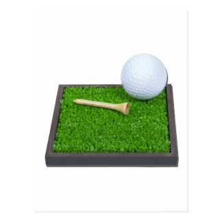 GolfBallTeeLayingOnGrass102111 Postcard