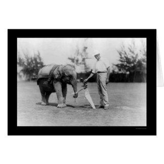 Golfer and Elephant Caddy in Miami, FL 1922 Greeting Card