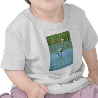 Goliath Heron Tee Shirt