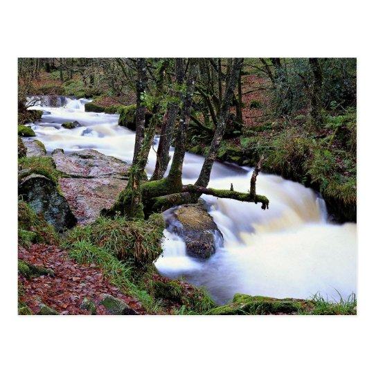 Golitha Falls, Cornwall, England at the Cornish Ri Postcard