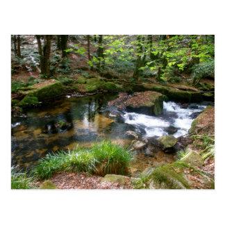 Golitha Falls River Fowey Cornwall England Postcard