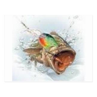 gone fishin postcard