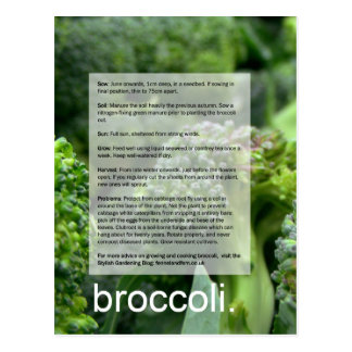Good Growing Guide: Broccoli and radishes Postcard
