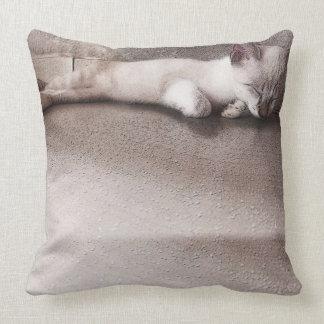 Good looking cushion sleeping