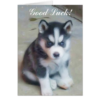 Good Luck Siberian Husky Puppy card