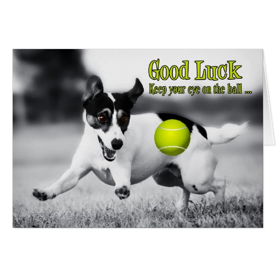 Good Luck Terrier Dog Greeting Card