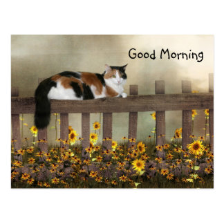 Good morning calico kitty postcard