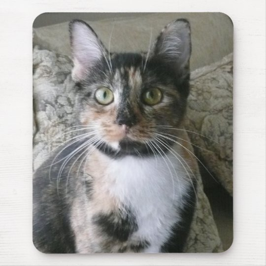 Good Morning Kitty! Calico will brighten your day! Mouse Mat