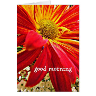 Good Morning Note Card