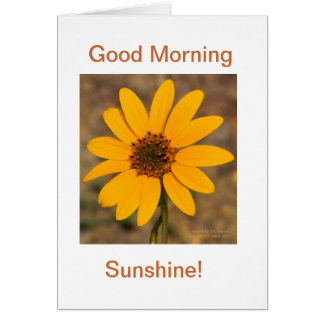 Good Morning, Sunshine! Card