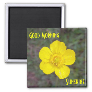 Good Morning Sunshine Magnet