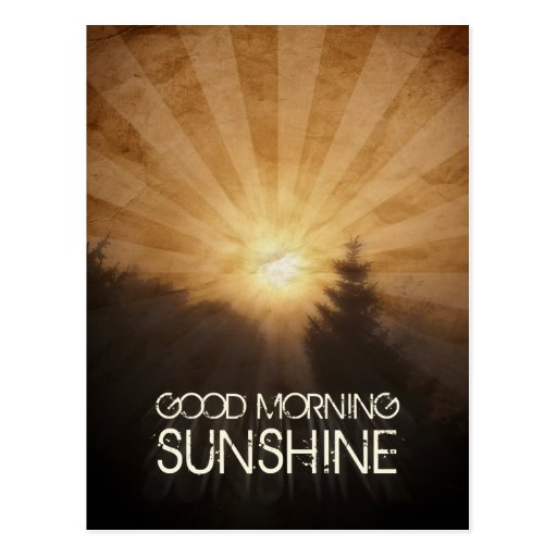 Good Morning Sunshine Postcard
