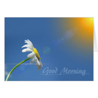 Good Morning, Thanks for bringing sunshine Card