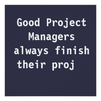 Good Project Managers Funny Famous PMO Quote Poster
