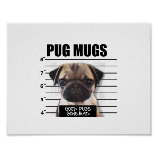 good pugs gone bad poster