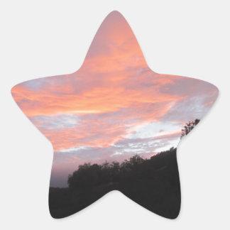 good quality but cheaper star sticker