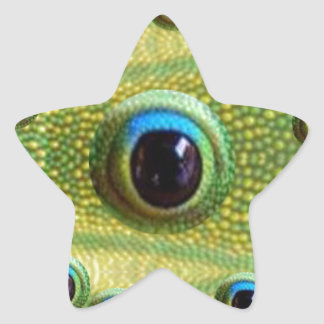 GOODLUCK Chinese Dragon Eyes Star Sticker