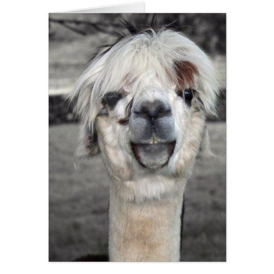 Goofy Llama Greeting Card