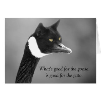 Goose and Gato Note Card