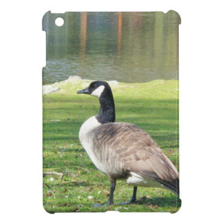 Goose at the waterfront, Wildlife Animals, Nature iPad Mini Cases