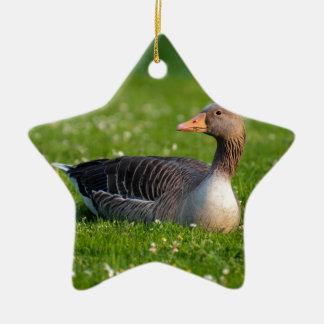 Goose Ceramic Star Decoration