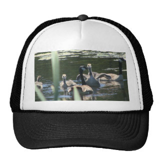 Goose Family Swim Cap