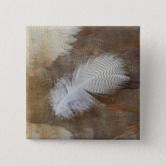 Goose Feather Still Life 15 Cm Square Badge