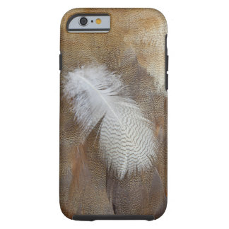 Goose Feather Still Life Tough iPhone 6 Case