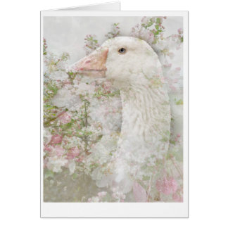 Goose in Blossoms Card