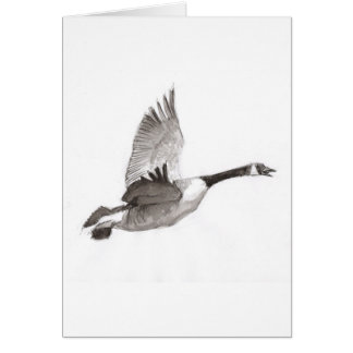 Goose in flight drawing cards