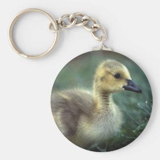 goose basic round button key ring