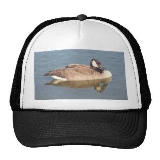 Goose on Lake Erie Cap