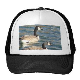 Goose Pair Cap