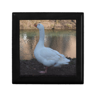 Goose Small Square Gift Box