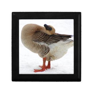 Goose Small Square Gift Box