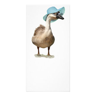 Goose with a Floppy Blue Summer Hat Photo Card Template