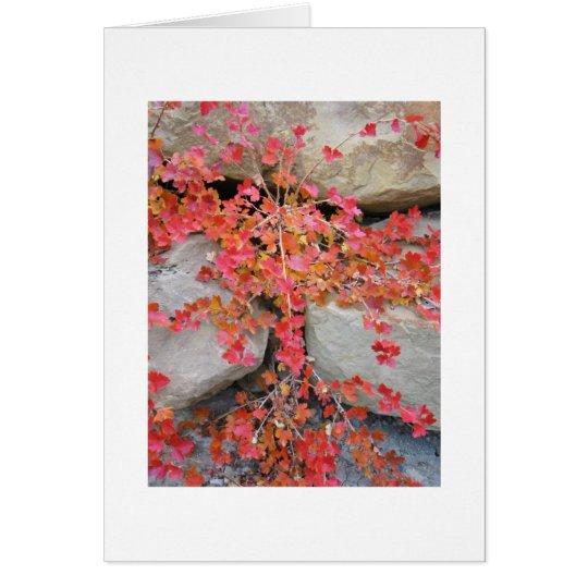 Gooseberry Bush Card
