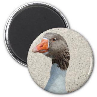 Goosy Goose Magnet Fridge Magnets