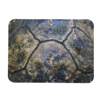 Gopher Tortoise Shell Rectangle Magnet