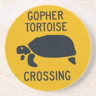 gophercrossing2 coaster