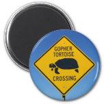 gophercrossing magnet