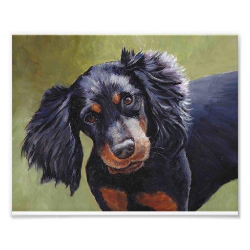 Gordon Setter Dog Art Print Art Photo