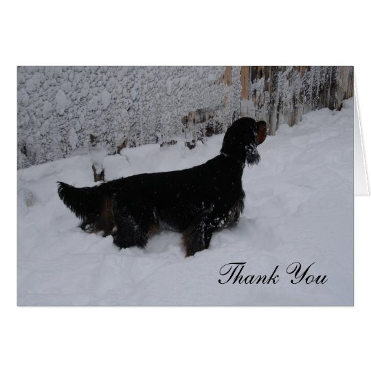 Gordon Setter in a Snowstorm Thank You Note