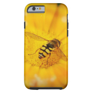 Gorgeous Bee on Golden Flower Tough iPhone 6 Case