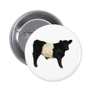 Gorgeous Belted Galloway Steer Cutout 6 Cm Round Badge
