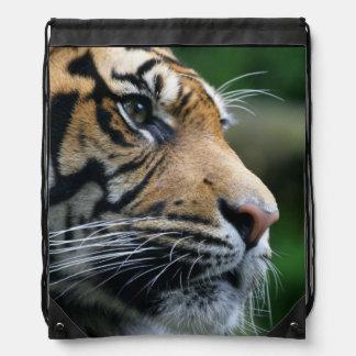 Gorgeous Bengal Tiger Face Rucksacks