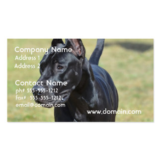 Gorgeous Black Great Dane Double-Sided Standard Business Cards (Pack Of 100)
