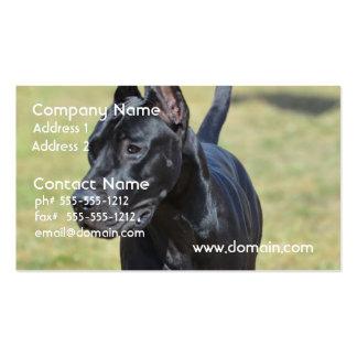 Gorgeous Black Great Dane Business Card