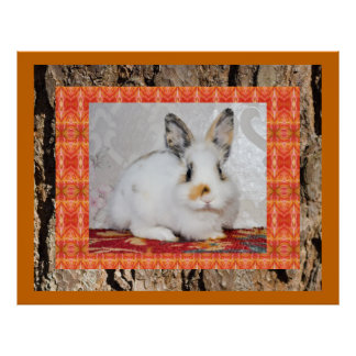 GORGEOUS BUNNY COLLAGE POSTERS