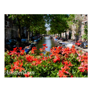 Gorgeous Canal View of Amsterdam Postcard